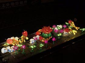 Phoenix_Lantern Festival_5