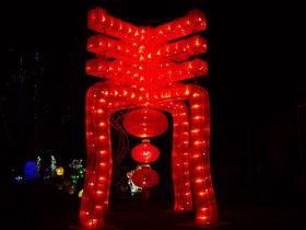 Phoenix_Lantern Festival_9