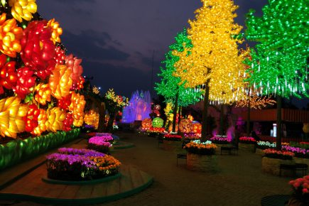 landscape lighting_1