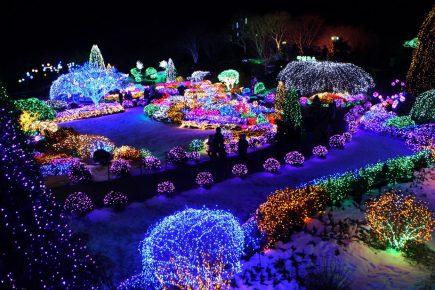 luminous landscapeslighting