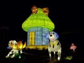 Phoenix_Lantern Festival_2